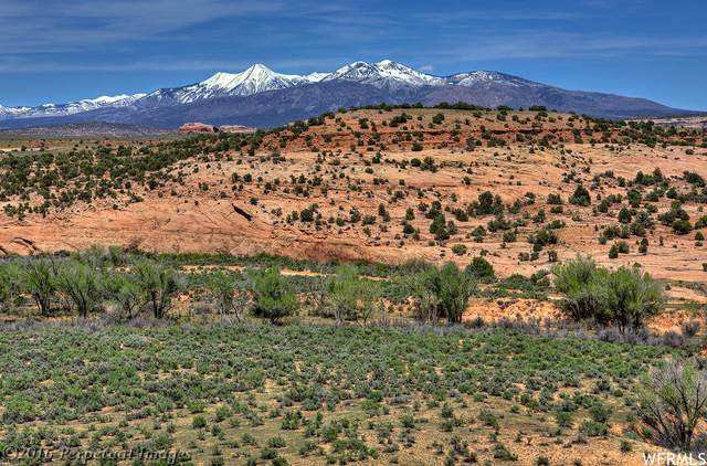 240 Acres Looking Glass Rd, Moab, UT 84532 (#1732547) :: Black Diamond Realty