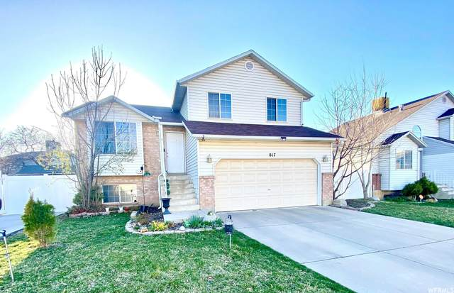 817 S Meadow View Dr, Ogden, UT 84404 (#1732807) :: Colemere Realty Associates
