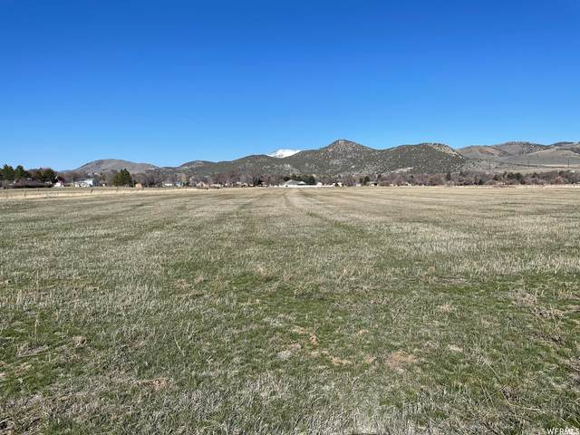 Address Not Published, Malad City, ID 83252 (#1732846) :: REALTY ONE GROUP ARETE