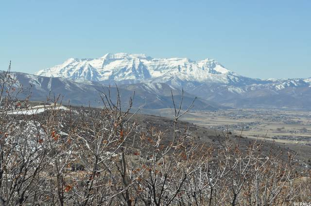 1907 S Ridgeline Dr E #1242, Heber City, UT 84032 (MLS #1732859) :: High Country Properties