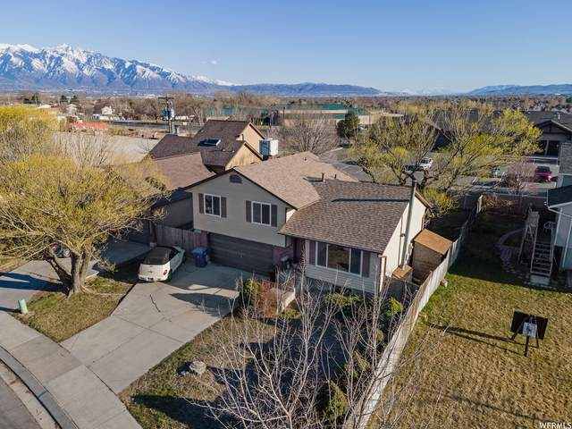 3493 W 6135 S, Taylorsville, UT 84129 (MLS #1733529) :: Lookout Real Estate Group