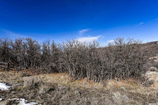 1924 S Beaver Bench Rd #1438, Heber City, UT 84032 (MLS #1733580) :: High Country Properties