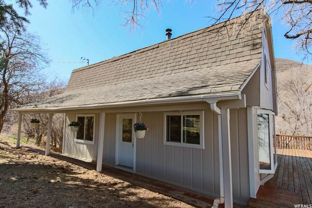 4265 S Tammy Ln, Heber City, UT 84032 (#1733686) :: Exit Realty Success