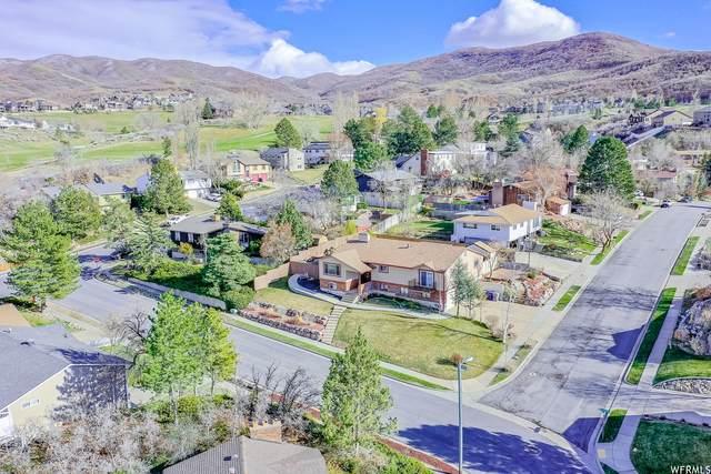 772 E Raygene Way, North Salt Lake, UT 84054 (#1734027) :: The Perry Group