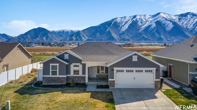 596 N 2040 E, Spanish Fork, UT 84660 (#1734058) :: Berkshire Hathaway HomeServices Elite Real Estate
