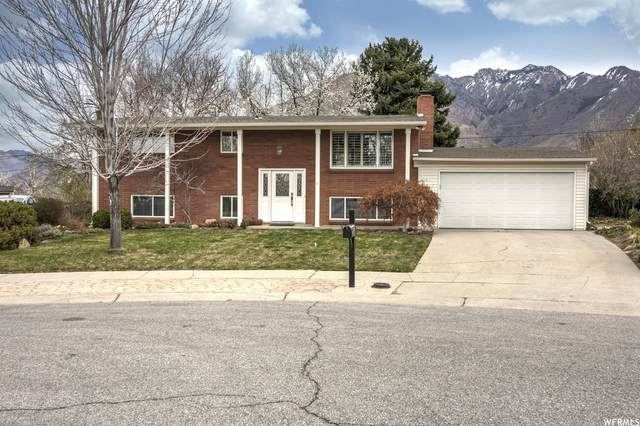 2075 E Susan Way, Cottonwood Heights, UT 84121 (#1734151) :: Black Diamond Realty