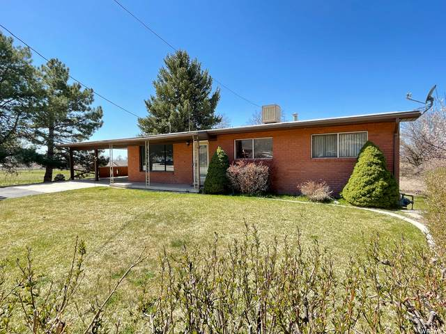 10725 N Highway 38, Deweyville, UT 84309 (#1734436) :: C4 Real Estate Team