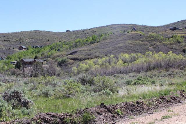1856 S Beaver Bench Rd #1443, Heber City, UT 84032 (MLS #1734443) :: High Country Properties