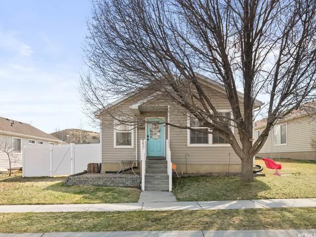 2968 E Saddle Rock Rd, Eagle Mountain, UT 84005 (MLS #1734445) :: Lookout Real Estate Group