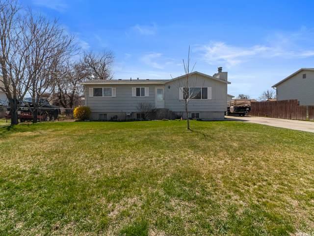 95 W 600 S, Tremonton, UT 84337 (#1734514) :: C4 Real Estate Team