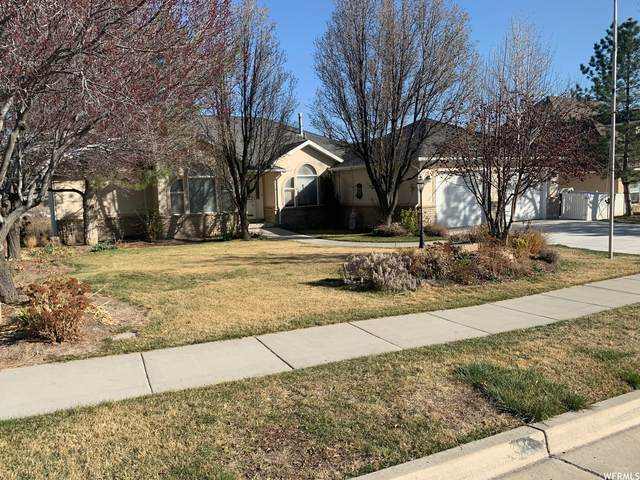 12067 S Lampton View Dr W, Riverton, UT 84065 (#1734523) :: Colemere Realty Associates