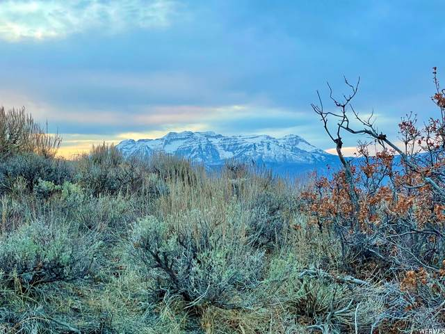1755 S Ridge Line Dr #1236, Heber City, UT 84032 (MLS #1734542) :: High Country Properties