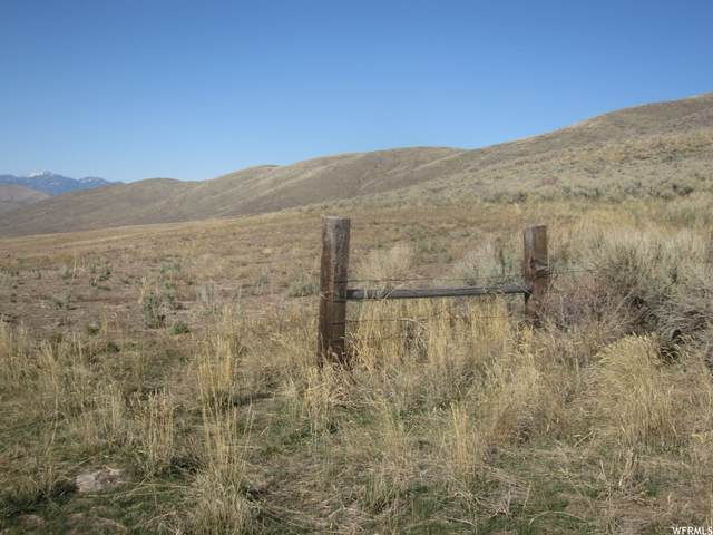 Address Not Published, Malad City, ID 83252 (#1734664) :: C4 Real Estate Team