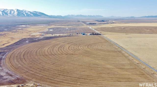 Address Not Published, Holbrook, ID 83243 (#1735011) :: REALTY ONE GROUP ARETE