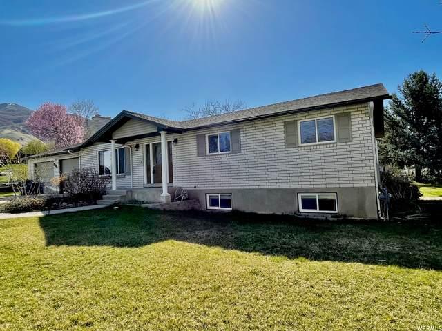 946 E 300 N, Kaysville, UT 84037 (#1735041) :: Utah Dream Properties