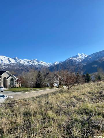127 Cascade Ave, Alpine, UT 84004 (#1735049) :: The Fields Team
