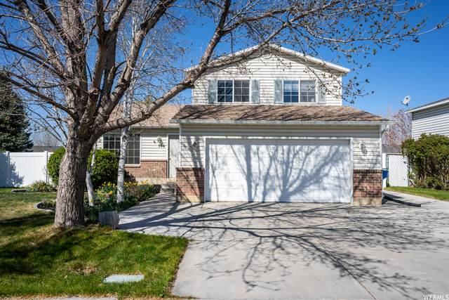 596 S 1130 W, Lehi, UT 84043 (#1735125) :: Berkshire Hathaway HomeServices Elite Real Estate