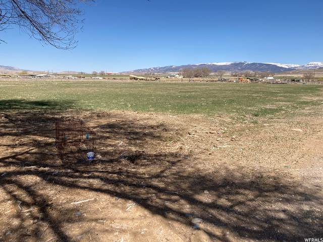 Address Not Published, Axtell, UT 84621 (#1735526) :: REALTY ONE GROUP ARETE
