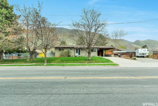 189 S Canyon Ave, Springville, UT 84663 (#1735764) :: Red Sign Team