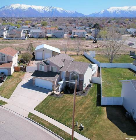 4752 S 4075 W, Roy, UT 84067 (#1735778) :: The Perry Group