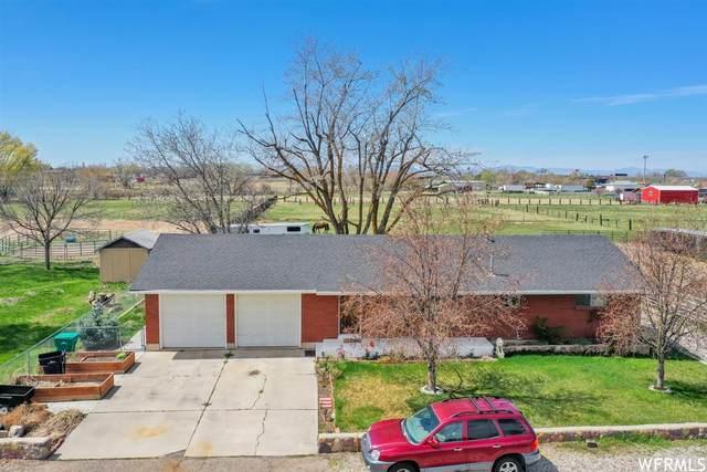 343 N 1600 W, Marriott Slaterville, UT 84404 (MLS #1735927) :: Lookout Real Estate Group