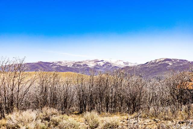 4085 Aspen Camp Loop #74, Park City, UT 84098 (#1736068) :: Doxey Real Estate Group