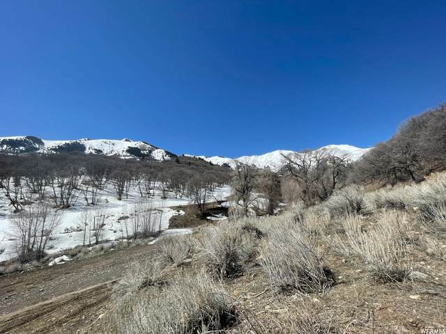 Address Not Published, Cedar Fort, UT 84013 (#1736148) :: Villamentor