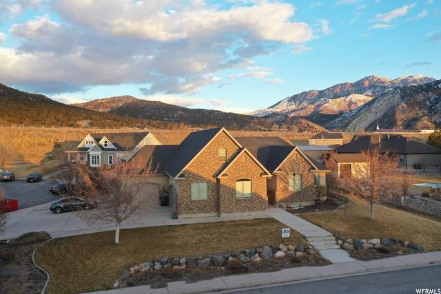 838 N 800 E, Nephi, UT 84648 (MLS #1736218) :: Summit Sotheby's International Realty
