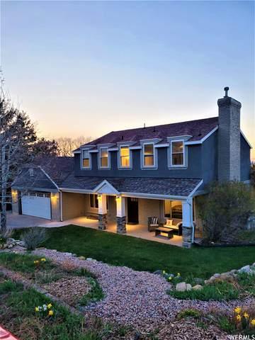 477 E Salem Hills Dr S, Elk Ridge, UT 84651 (#1736459) :: Utah Dream Properties