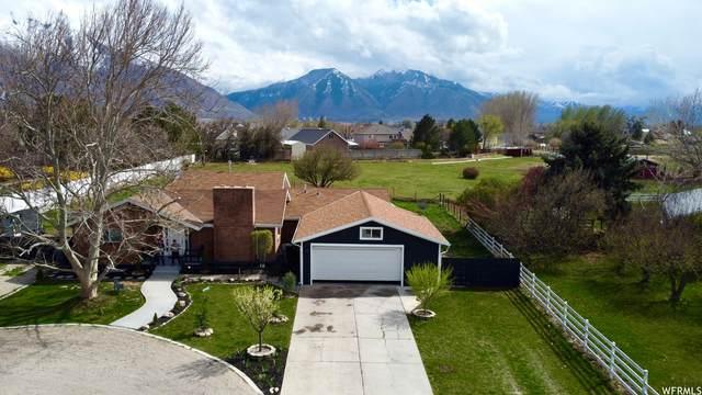 1125 W 1200 N, Mapleton, UT 84664 (#1736549) :: Big Key Real Estate