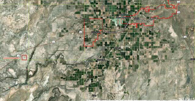 Address Not Published, Delta, UT 84624 (MLS #1736592) :: Summit Sotheby's International Realty