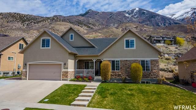 10356 N Avondale Dr W, Cedar Hills, UT 84062 (#1736605) :: Bustos Real Estate | Keller Williams Utah Realtors