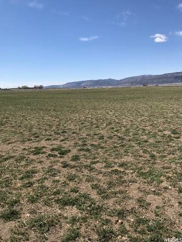 Address Not Published, Ephraim, UT 84627 (#1736635) :: Bustos Real Estate | Keller Williams Utah Realtors