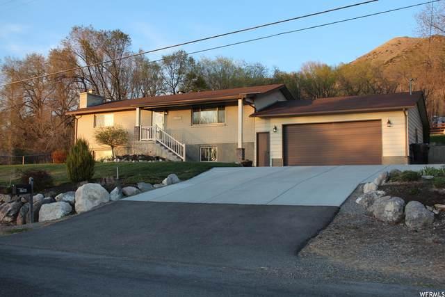 11560 N 3400 W, Deweyville, UT 84309 (#1736667) :: C4 Real Estate Team