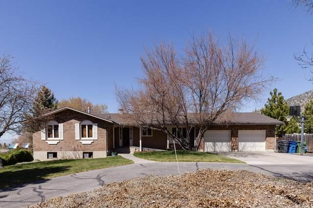 685 E Canyon Rd S, Providence, UT 84332 (#1736699) :: Utah Dream Properties