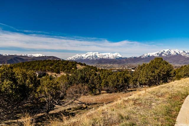 240 N Ibapah Peak Dr #141, Heber City, UT 84032 (#1737007) :: The Fields Team