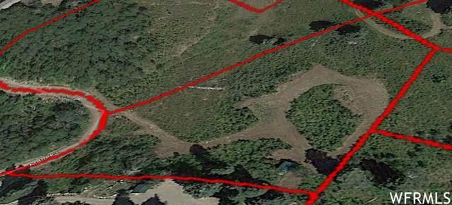 23290 N Main Rd J-1, Fairview, UT 84629 (#1737832) :: Villamentor