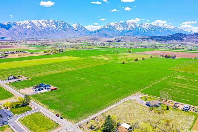 359 W Center St, Genola, UT 84655 (MLS #1737937) :: Lookout Real Estate Group