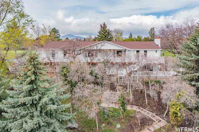 5152 W 10400 N, Highland, UT 84003 (#1738262) :: Pearson & Associates Real Estate