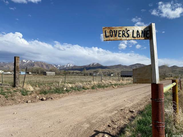 100 N Lovers Ln, Oak City, UT 84649 (MLS #1738703) :: Summit Sotheby's International Realty