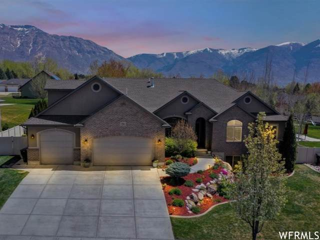 3296 N 850 W, Pleasant View, UT 84414 (#1738782) :: Utah Dream Properties