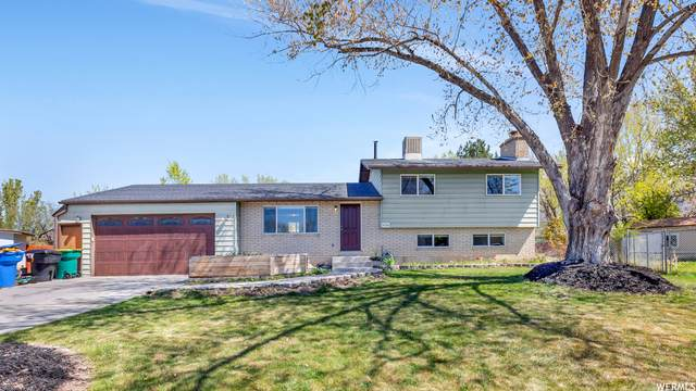 1764 N 720 W, Orem, UT 84057 (#1738845) :: Big Key Real Estate