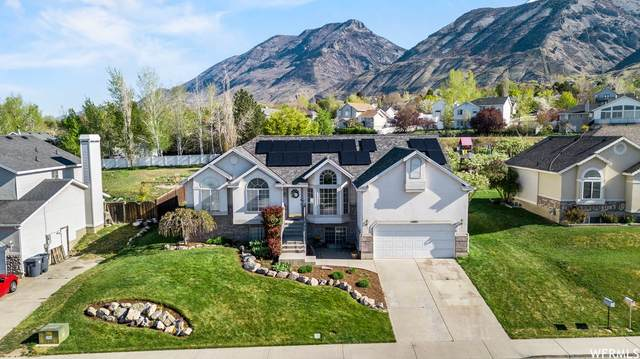 1403 E 1000 S, Pleasant Grove, UT 84062 (#1738889) :: Red Sign Team
