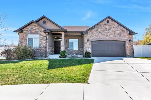 4059 W Shady Plum Way S, South Jordan, UT 84009 (#1739004) :: Utah Dream Properties