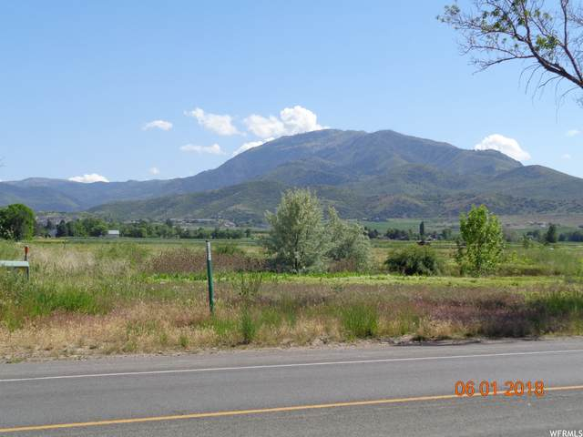 Address Not Published, Salem, UT 84653 (#1739013) :: Black Diamond Realty