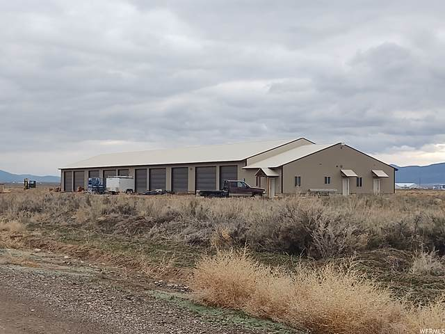 12645 N 4250 E, Chester, UT 84623 (#1739069) :: The Perry Group