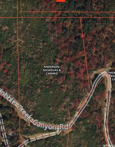 70 E Upper Oakwood Dr #70, Springville, UT 84663 (#1739313) :: Big Key Real Estate