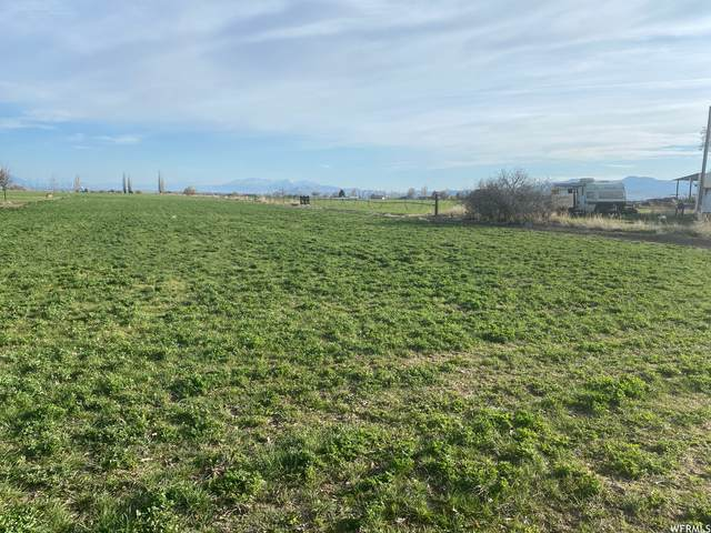 849 W 800 S, Preston, ID 83263 (#1739321) :: The Perry Group