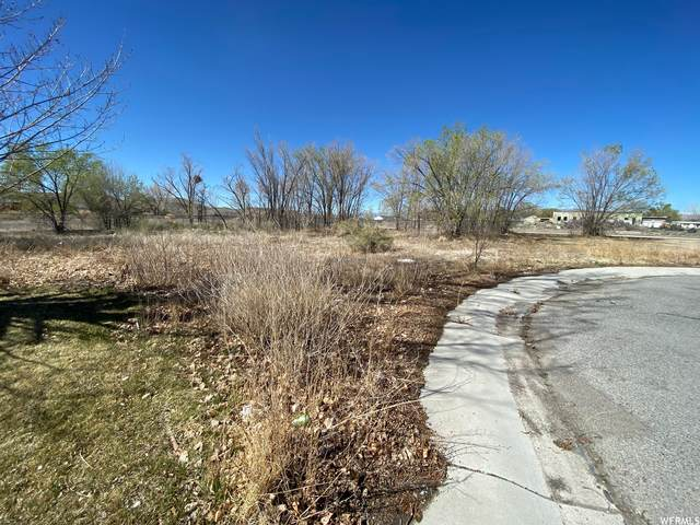 Address Not Published #43, Wellington, UT 84542 (MLS #1739332) :: Summit Sotheby's International Realty