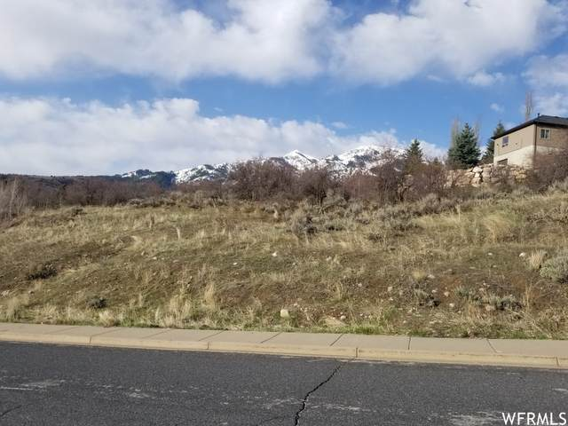 5943 N Creekside Dr #30, Morgan, UT 84050 (#1739404) :: Utah Dream Properties